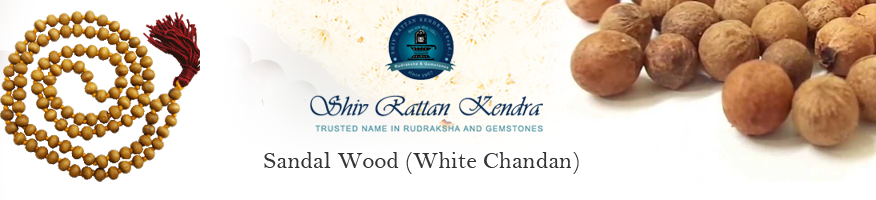 Sandal Wood (White Chandan)