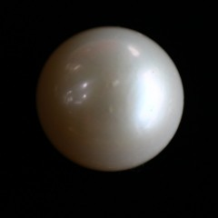 Natural Pearl (Moti) - 11.99 carats