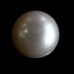 Natural Pearl (Moti) - 13.55 carats