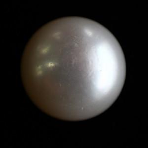 Natural Pearl (Moti) - 12.38 carats