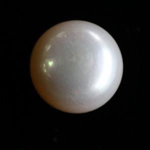 Natural Pearl (Moti) - 7.9 carats