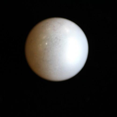 Natural Pearl (Moti) - 5.83 carats