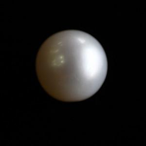 Natural Pearl (Moti) - 5.42 carats