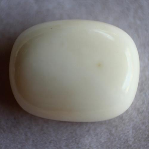 Natural White Coral  - 11.39 carats