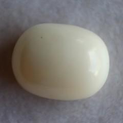 Natural White Coral  - 10.72 carats