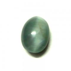Natural  Cats Eye (Lehsunia) - 11.93 carats