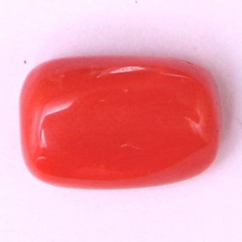 Natural Red Coral (Moonga) - 11.03 carats