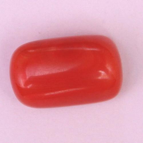 Natural Red Coral (Moonga) - 10.35 carats