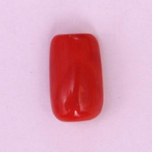 Natural Red Coral (Moonga) - 9.23 carats