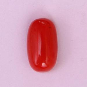 Natural Red Coral (Moonga) - 9.45 carats