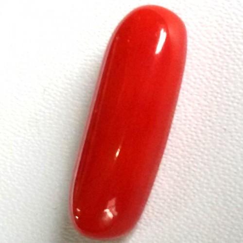 Natural Red Coral (Moonga) - 5.63 carats
