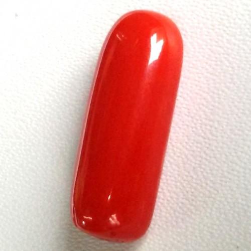 Natural Red Coral (Moonga) - 5.85 carats