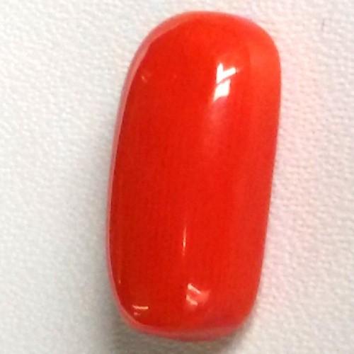 Natural Red Coral (Moonga) - 4.95 carats