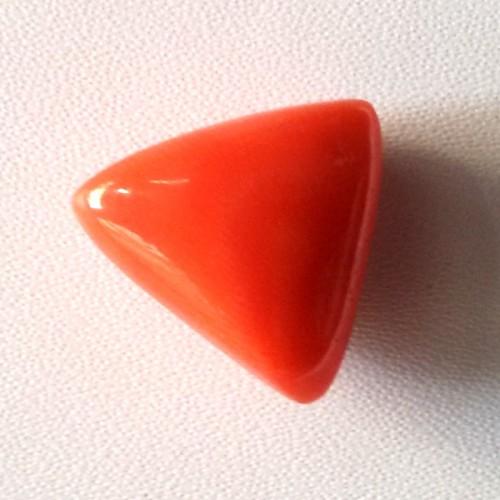 Natural Triangular Red Coral (Moonga) - 14.25 carats